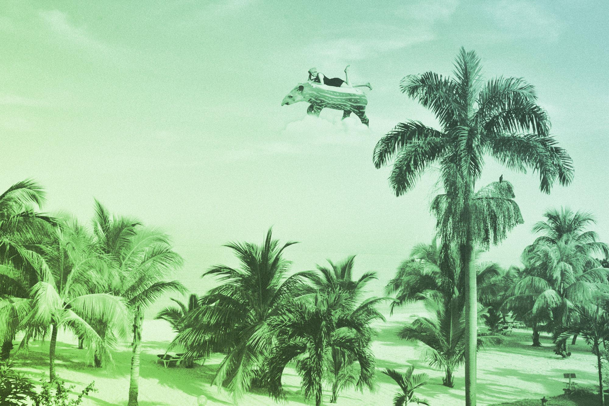 Sieste sous les palmier - Transat en ville 2018